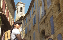 saint remy de provence van gogh alpille chain olive oil olive groves great market of provence