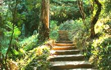 domaine du rayol botanical garden porquerolles