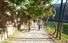 best walking tours porto douro portugal