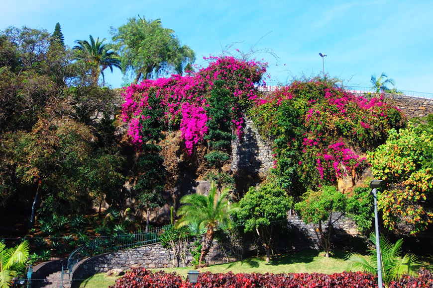Madeira walking holiday : discover Funchal, the capital of Madeira.